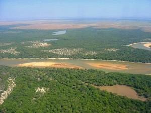 El papel de Brigard & Urrutia en acaparamiento de tierras: Más preguntas que respuestas.