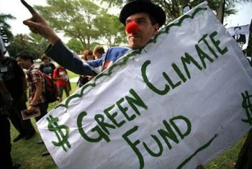 """El engaño de las ONGs ambientalistas: La regulación ambiental al servicio de la """"confianza inversionista"""""""