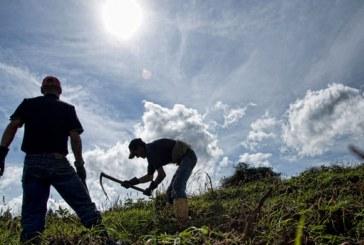 El fenómeno del acaparamiento de tierra en Bolívar: un eslabón más del libre comercio en el agro