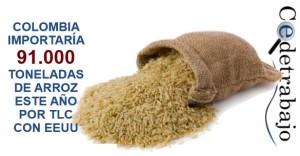 Colombia importaría 91.000 toneladas de arroz este año por TLC con EEUU