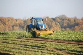 Boletín No. 3 (ASINFAR-AGRO) Guerra comercial y sus implicaciones en el sector agropecuario colombiano